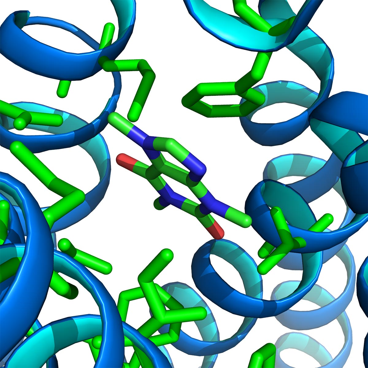 Novel ligand-bound GPCR structures